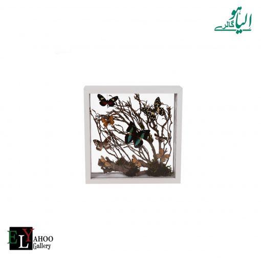 تابلو پروانه مربع متوسط سفید