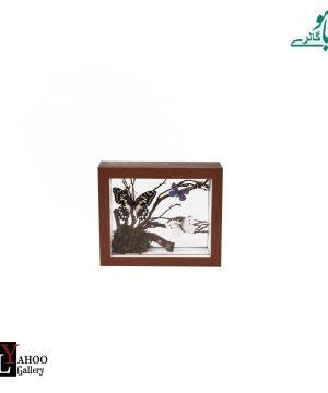 تابلو پروانه مستطیل کوچک قهوه ای