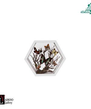 تابلو پروانه 6ضلعی کوچک سفید