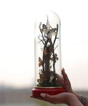 حباب پروانه قطر 10 ارتفاع 30