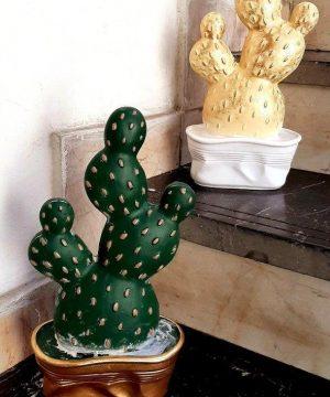 کاکتوس پهن طلایی و سبز