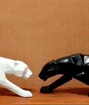 ببر سفید و سیاه
