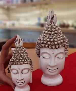 خانواده بودا (1)