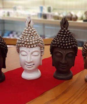 خانواده بودا (2)