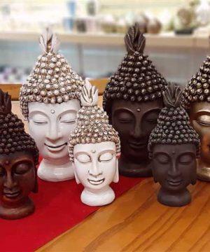 خانواده بودا (3)