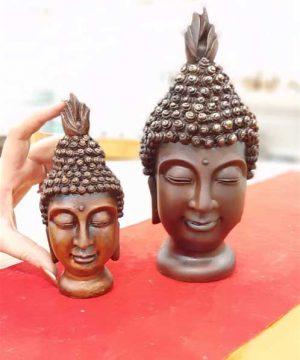 خانواده بودا (7)