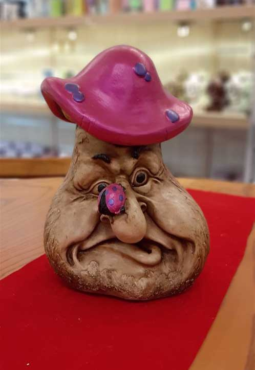 قارچ بزرگ صورتی
