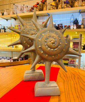 ستاره دریایی بزرگ نقرابی